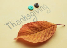 Thanksgiving  inscription. Thanksgiving inscription  with little buttons and leaf Stock Images