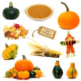 Thanksgiving items isolated. Various autumn or Thanksgiving items individually isolated on white Royalty Free Stock Image