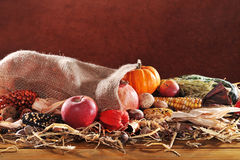 Thanksgiving with jute bag. Thanksgiving - different pumpkins, maize-cob, apples and grain in jute bag on straw with copyspace in front of brown background Stock Images