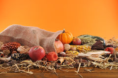 Thanksgiving with jute bag Stock Photography