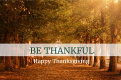 Thanksgiving Message On Wooden Background Design. Digital Composite of Thanksgiving Message On Wooden Background Design Stock Photography