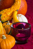 Thanksgiving party background Royalty Free Stock Photo