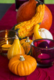 Thanksgiving party background Stock Photo