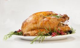 Thanksgiving Turkey on White. Thanksgiving pepper roasted turkey garnished with blackberry and pink peppercorn on white royalty free stock photos