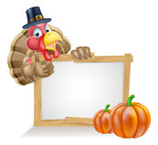 Thanksgiving Pilgrim Hat Turkey Pumpkin Sign Stock Images