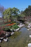 Thanksgiving Point Tulip Festival stream royalty free stock photography