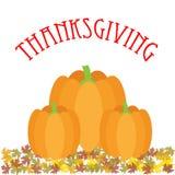 Thanksgiving poster Royalty Free Stock Image