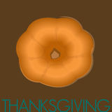 Thanksgiving Pumpkin. Drawn in illustrator Stock Photo