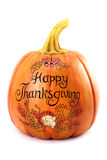 Thanksgiving pumpkin. Against a white background Royalty Free Stock Photos