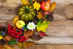 Thanksgiving pumpkin, apple, lilac flowers and rowan wreath, cop Stock Image