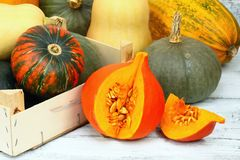 Thanksgiving pumpkin autumn background Stock Image