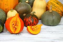 Thanksgiving pumpkin autumn background Royalty Free Stock Image