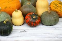 Thanksgiving pumpkin autumn background Stock Photo