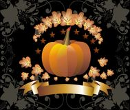 Thanksgiving pumpkin on black background Stock Images