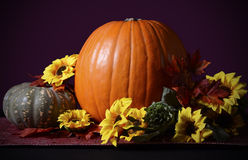 Thanksgiving Pumpkin Centerpiece Royalty Free Stock Photography