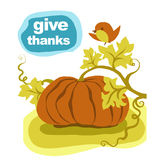 Thanksgiving pumpkin. Greeting card. Give thanks to the Lord for His blessing and harvest Royalty Free Stock Photography