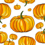 Thanksgiving pumpkin pattern Stock Photography