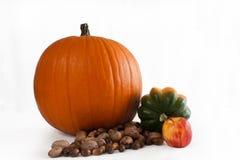 Thanksgiving Pumpkin Stock Photography