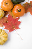 Thanksgiving Pumpkins and Autumn Leaves Stock Images