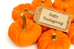 Thanksgiving pumpkins Royalty Free Stock Images