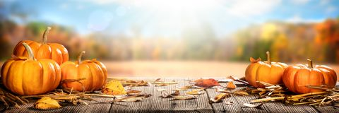 Thanksgiving Pumpkins And Leaves On Rustic Wooden Table With Sunlight