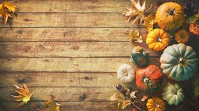 Free Thanksgiving Pumpkins With Fruits And Falling Leaves Stock Photos - 126941413