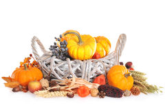 Thanksgiving  in rattan basket Stock Images