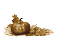 Thanksgiving retro image isolated Royalty Free Stock Image