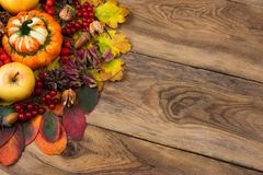 Thanksgiving rustic greeting background with yellow, red, magenta, green fall leaves, apples, acorns and viburnum berry, copy stock photo