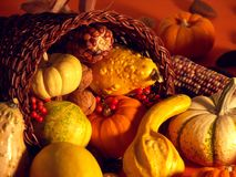 Thanksgiving Scene 2 Royalty Free Stock Photography