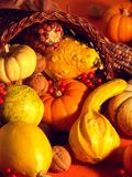 Thanksgiving Scene 3 Royalty Free Stock Photos