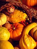 Thanksgiving Scene 4 royalty free stock images