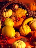 Thanksgiving Scene 6 Stock Image