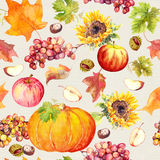 Thanksgiving seamless background. Fruits, vegetables - pumpkin, autumn leaves. Watercolor Stock Photography
