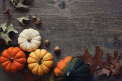 Thanksgiving season still life with colorful small pumpkins, acorn squash and fall leaves over rustic wood background. Thanksgiving season still life with Stock Photo