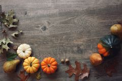 Thanksgiving season still life with colorful small pumpkins, acorn squash, fruit and fall leaves over rustic wood background. Thanksgiving season still life with Royalty Free Stock Photos