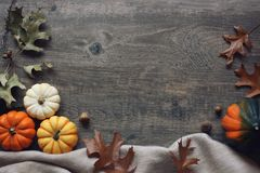 Thanksgiving season still life with colorful small pumpkins, acorn squash, soft blanket and fall leaves over rustic wood backgroun. Thanksgiving season still Royalty Free Stock Photos