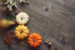 Thanksgiving season still life with colorful small pumpkins, acorns, fruit and fall leaves over rustic wood background. Thanksgiving season still life with Stock Photography