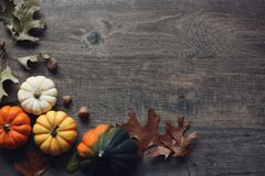 Thanksgiving season still life with colorful small pumpkins, squash and fall leaves over wooden background. Thanksgiving season still life with colorful small Stock Images