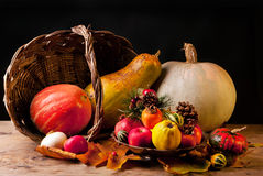 Thanksgiving Still Life royalty free stock images