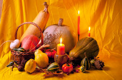 Thanksgiving Still Life stock images