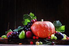 Thanksgiving still life, autumn harvest fruits and vegetables, d Royalty Free Stock Photography