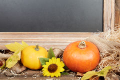 Thanksgiving still live with pumpkins and a blackboard royalty free stock photo