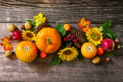 Free Thanksgiving Table. Pumpkins, Sunflowers, Apples And Fallen Leaves. Top View Flat Lay Stock Photos - 195040623