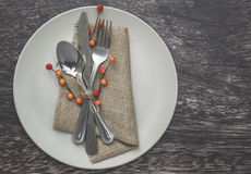 Thanksgiving Table Setting Stock Photography