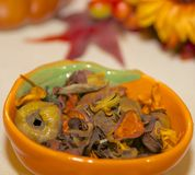 Thanksgiving Themed Potpourri Stock Photo