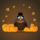 Thanksgiving turkey. Illustration of turkey with pumpkins which can be used for Thanksgiving occasion Royalty Free Stock Photography