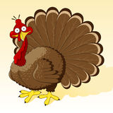 Thanksgiving_turkey Royalty Free Stock Photography