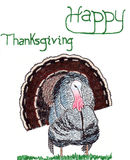 Thanksgiving Turkey. A drawing of wild turkey Royalty Free Stock Image