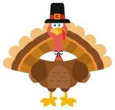 Thanksgiving Turkey Bird Wearing A Pilgrim Hat Royalty Free Stock Photo